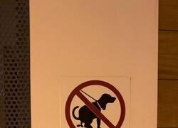 Enlace a Prohibiciones ambiguas