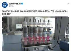 Enlace a Vacuna por duplicado