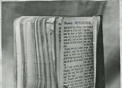Enlace a Salvado por la Biblia