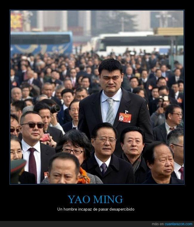 alto,destacando,yao ming