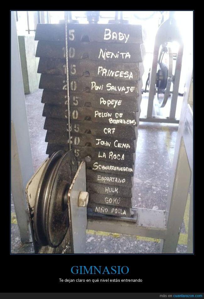 gimnasio,pesos