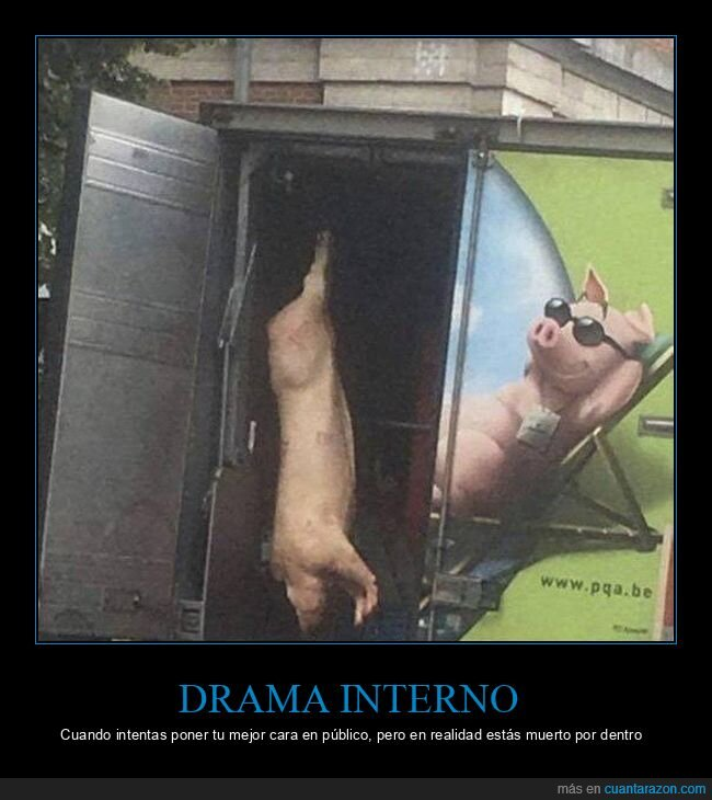 camión,cerdo,muerto