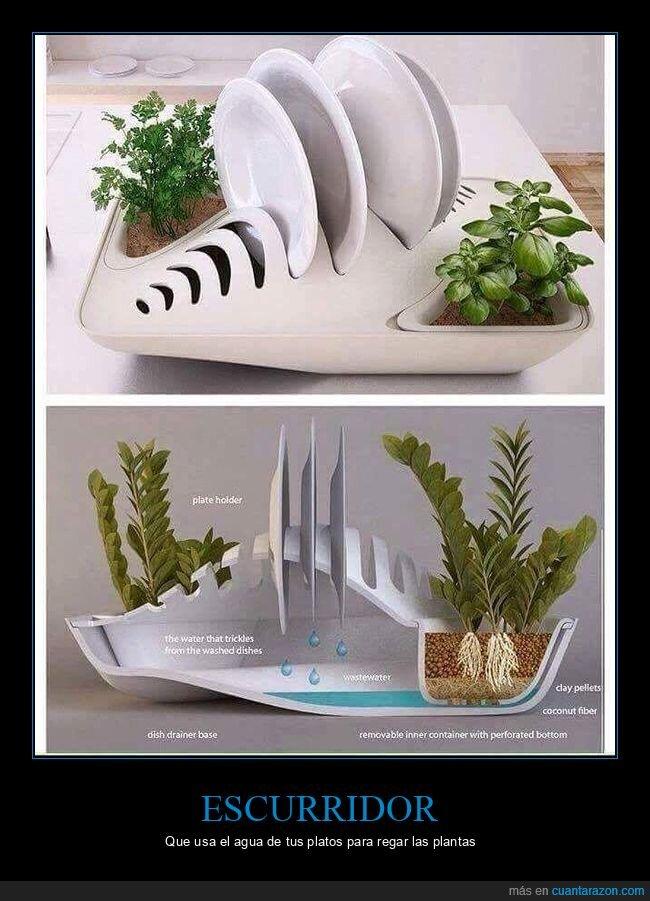 agua,escurridor,plantas,platos
