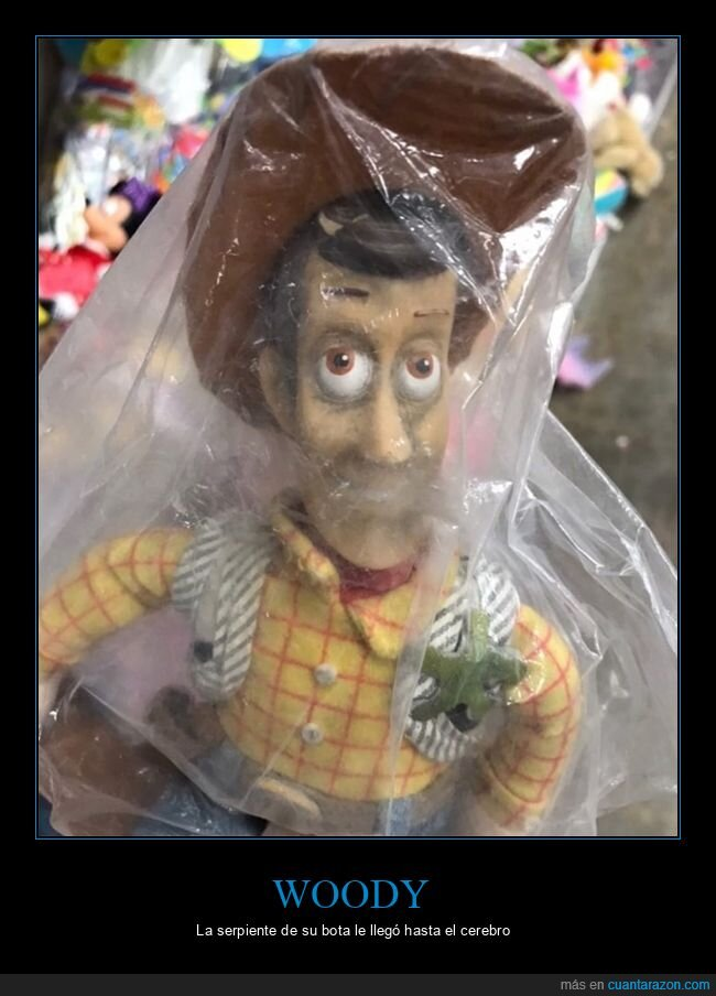 juguetes,mierder,toy story,woody