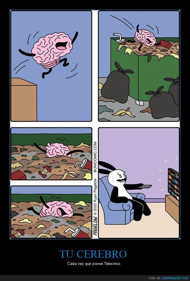 basura,cerebro,televisión
