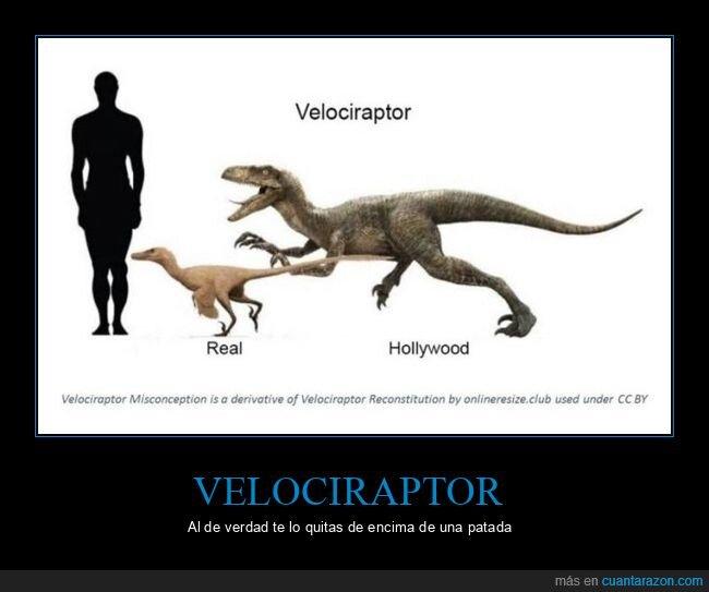 hollywood,real,velociraptor