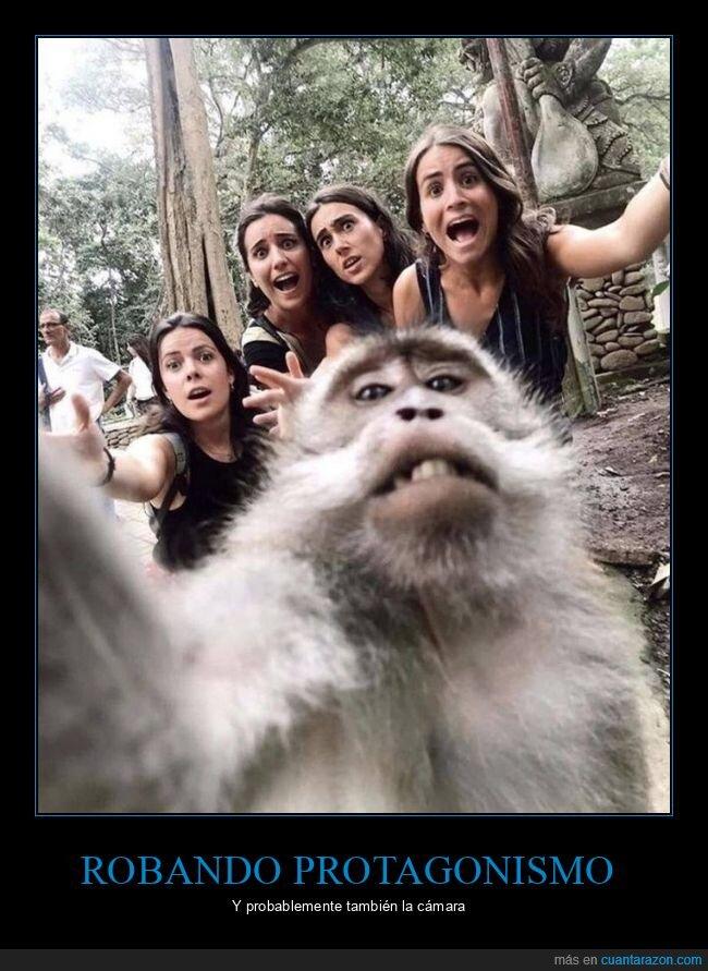 cámara,mono,selfie