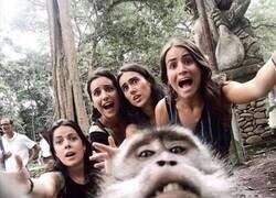 Enlace a Mejorando el selfie