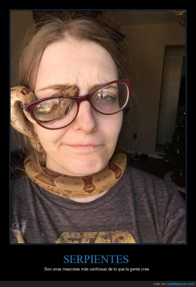 gafas,mascota,ojo,serpiente
