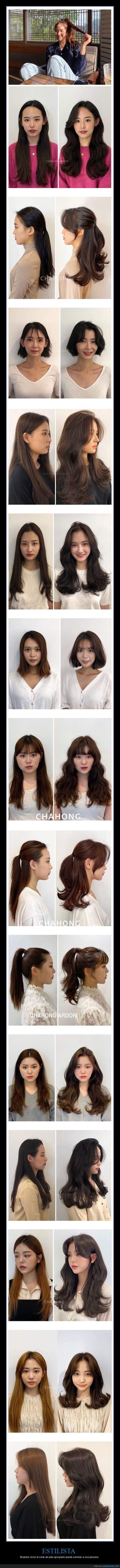 cambios,corte de pelo,estilista
