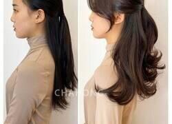 Enlace a Esta estilista muestra cómo el corte de pelo apropiado puede cambiar a una persona