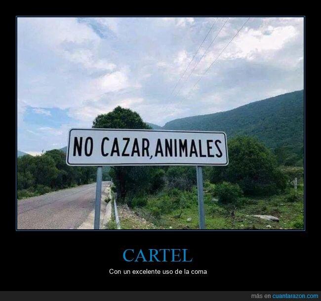 animales,carteles,cazar,coma