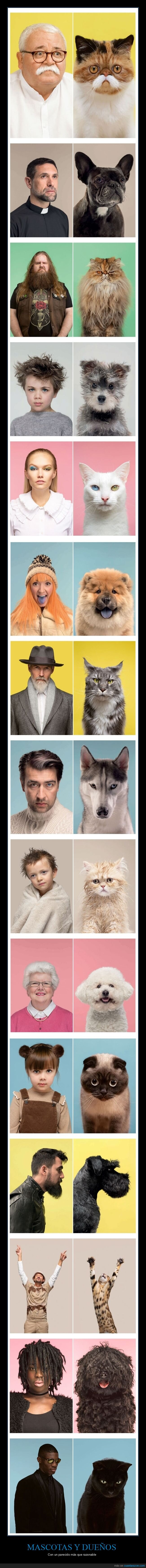 dueños,mascotas,parecidos