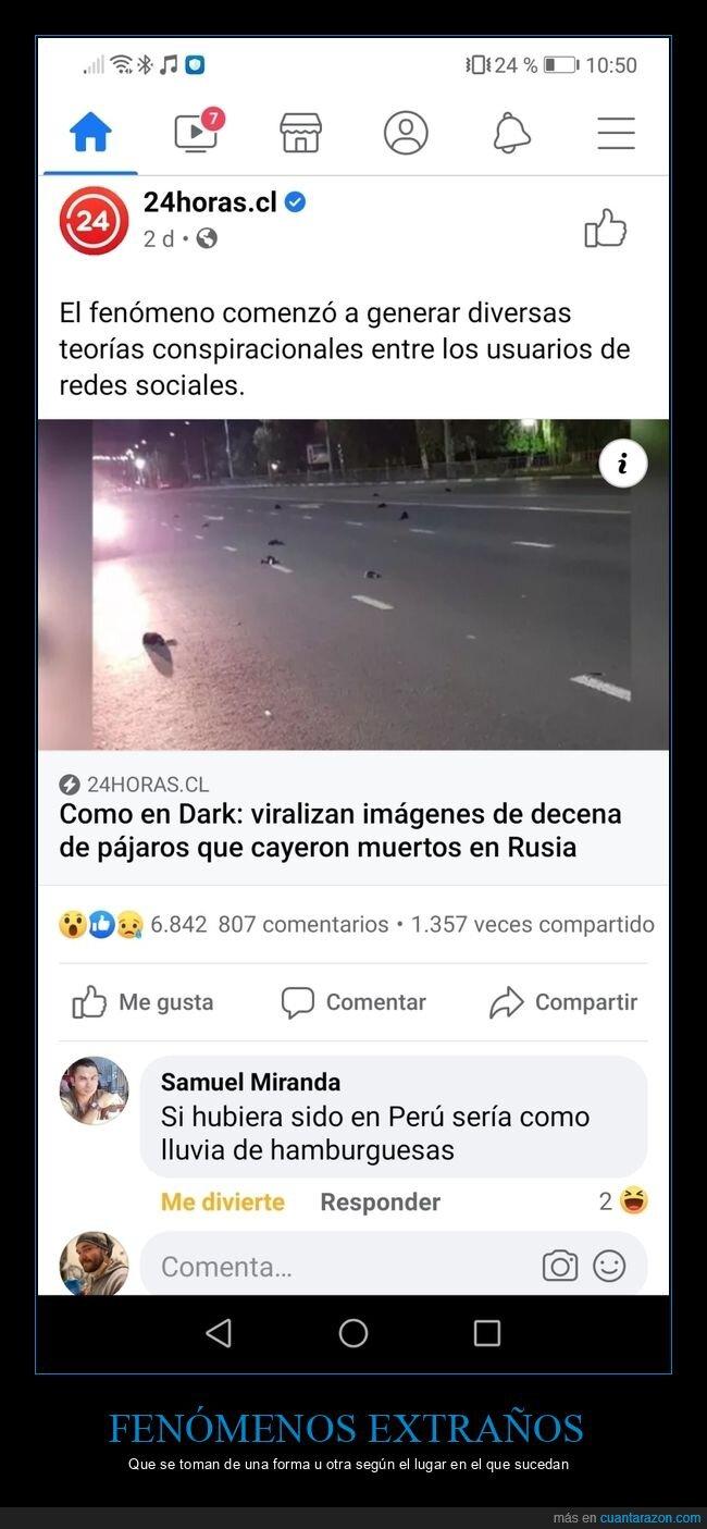 comentarios,lluvia de albóndigas,muertos,pájaros,perú