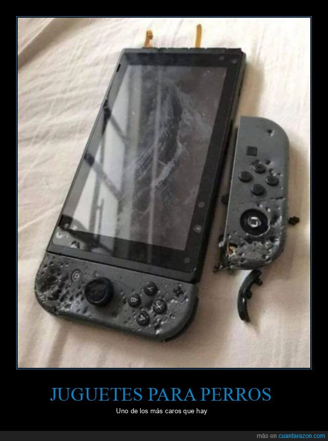 fails,nintendo switch,perro