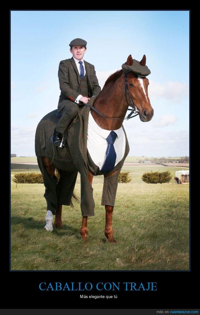 caballo,traje,wtf