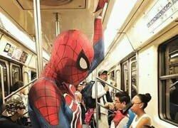 Enlace a Estúpido y sensual Spiderman...