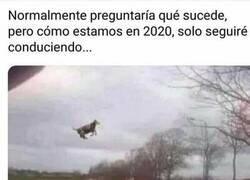 Enlace a Cosas de 2020