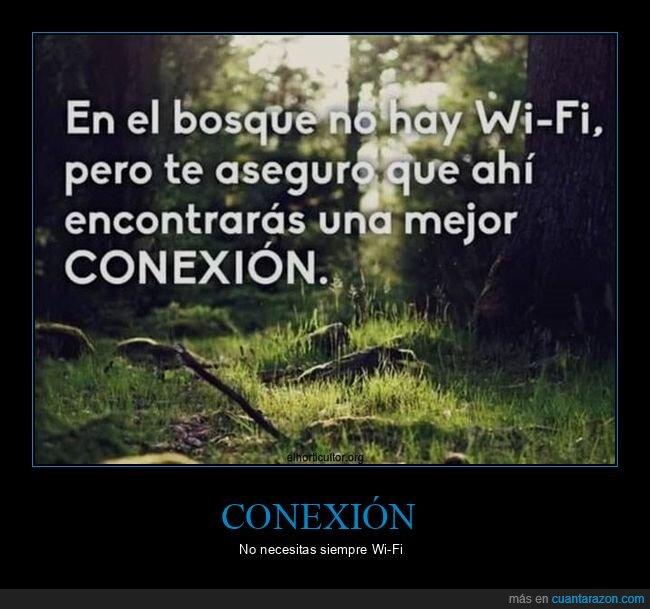bosque,conexión,wifi