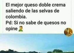 Enlace a Lo mejor de Colombia