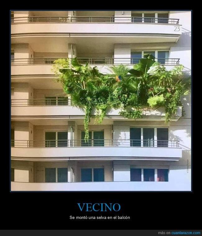 balcón,plantas,wtf