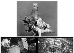 Enlace a Fotografía aérea de antaño