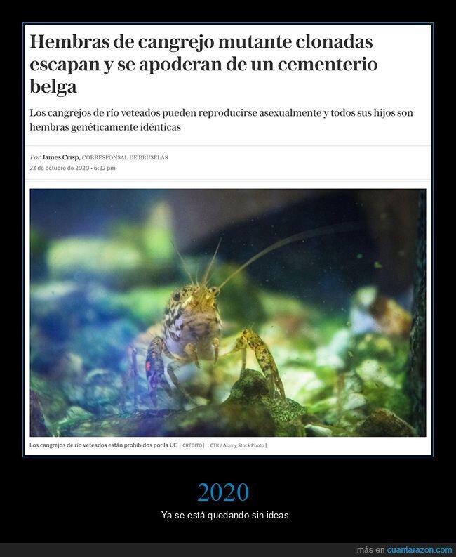 2020,cangrejos,cementerio,escapar,mutantes,wtf