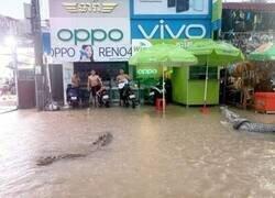 Enlace a No bastaba con la inundación...