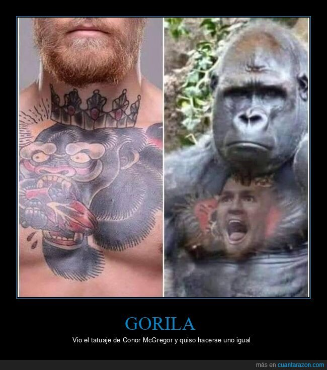 conor mcgregor,gorila,tattoo