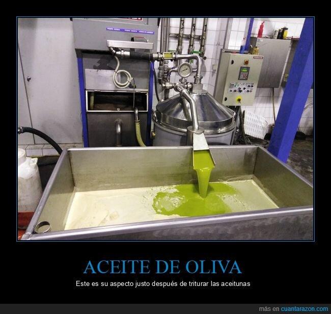 aceite,aceitunas,triturar