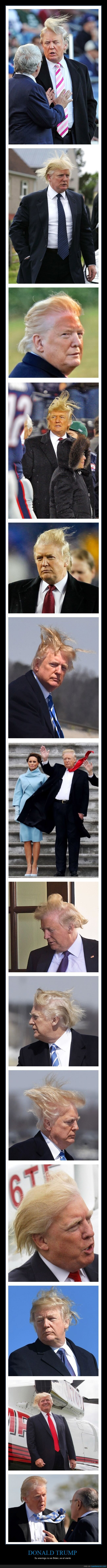 donmald trump,pelo,viento