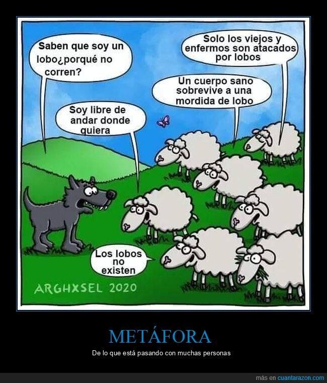 coronavirus,lobo,ovejas