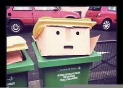 Enlace a A la basura