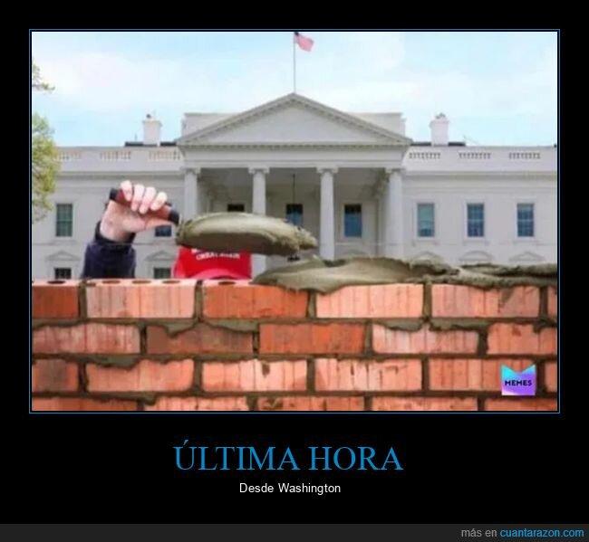 donald trump,muro,políticos