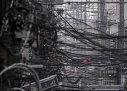 Enlace a Jungla de cables