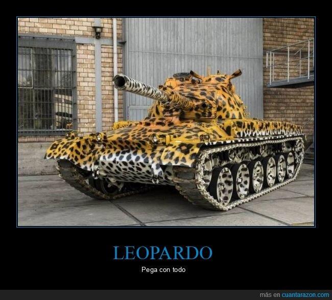 estampado,leopardo,tanque