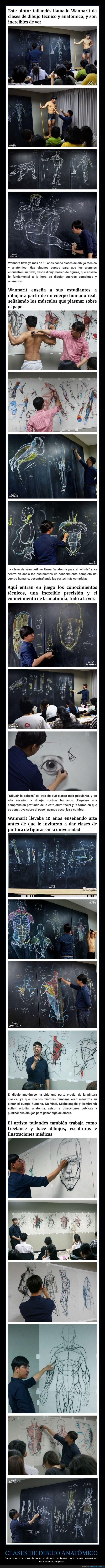 anatomía,clase,dibujo,profesor