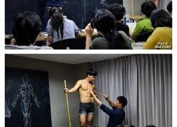 Enlace a Este artista es tan bueno en dibujo anatómico que ahora comparte sus conocimientos con sus alumnos