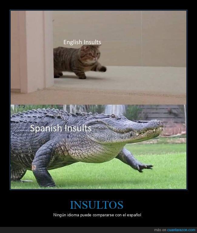 español,inglés,insultos