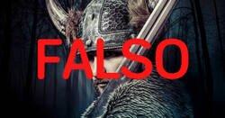 Enlace a Mitos sobre los vikingos que siempre hemos creído pero son completamente falsos