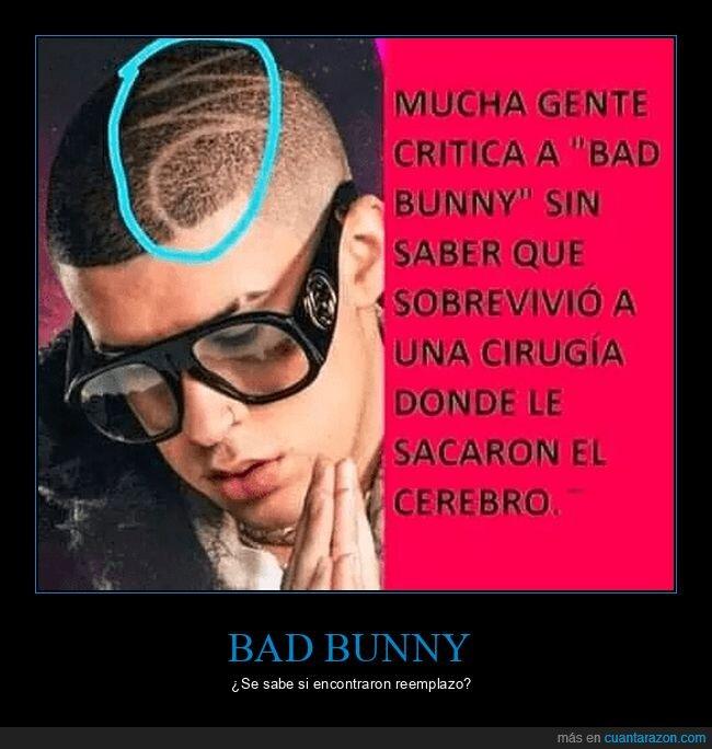 bad bunny,cerebro,cirugía