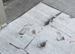 Enlace a Un error grabado en piedra