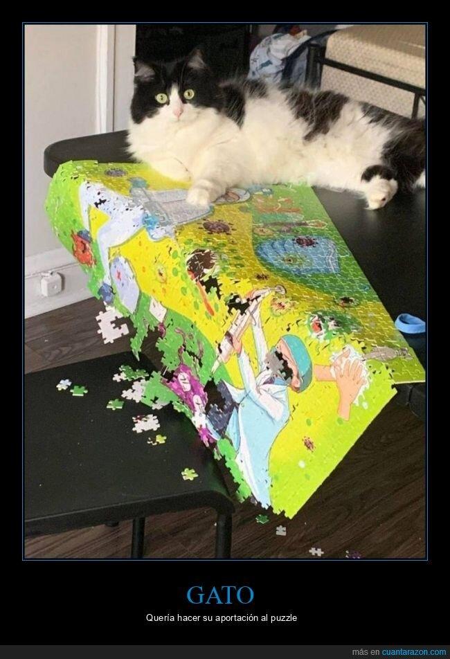 fails,gato,puzzle