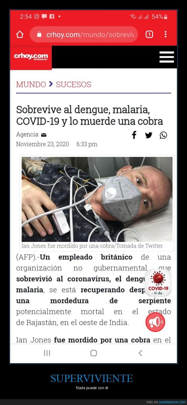 cobra,coronavirus,dengue,malaria,sobrevivir