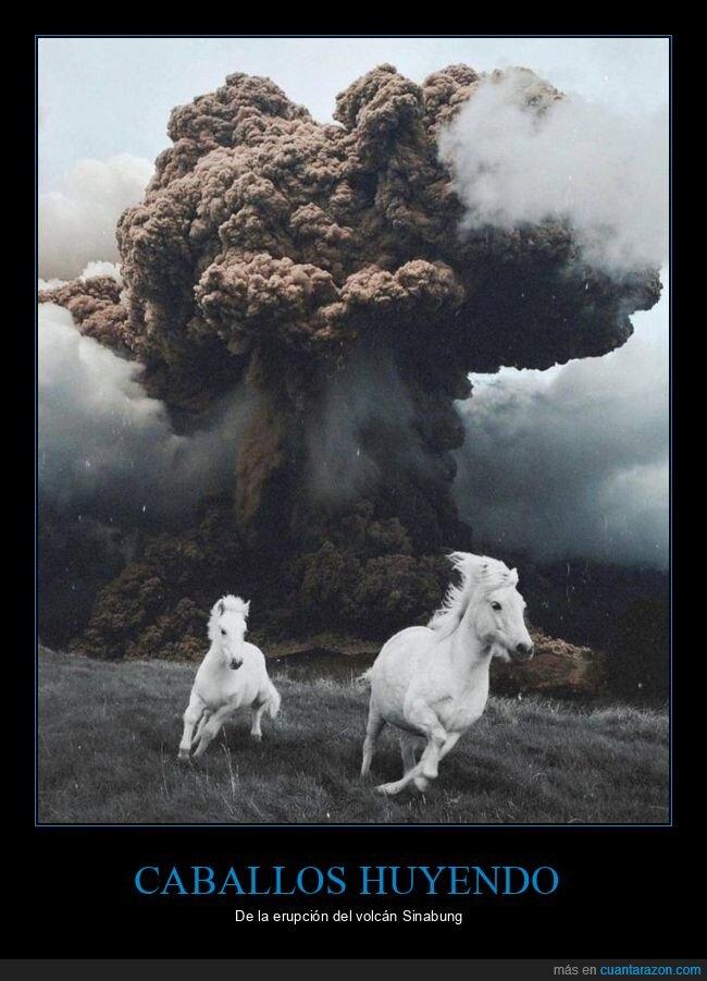 caballos,huyendo,volcán