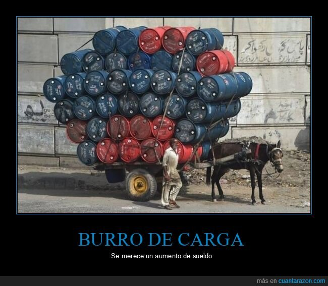 burro,carga,wtf