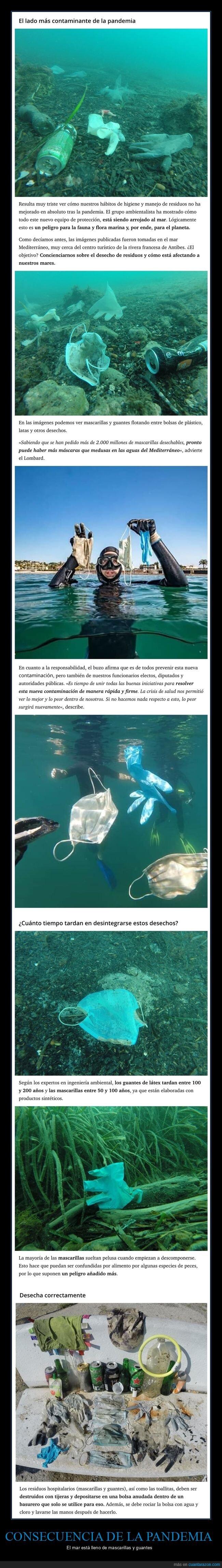 consecuencia,contaminación,coronavirus,guantes,mar,mascarillas,pandemia