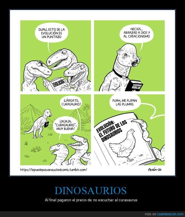 cura,dinosaurios,evolución,gallinas,plumas