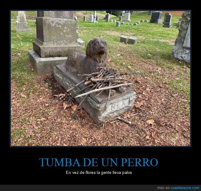 palos,perro,tumba
