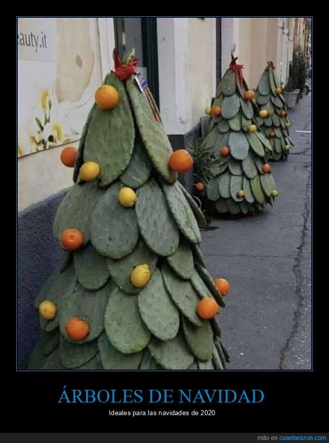 árboles de navidad,cactus,wtf